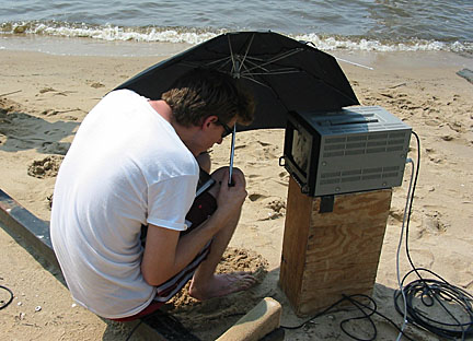 Monitor on beach
